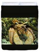 Hermit Crab Duvet Cover