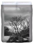 Hermit Island Tree 0192 Duvet Cover