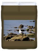 Herring Gull At Charmouth Duvet Cover