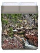 Hidden Beauty On The Trail Duvet Cover