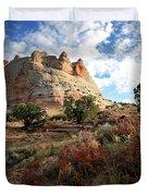 High Desert Paint Duvet Cover