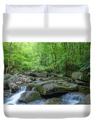 High Shoals Falls Trail In South Mountain Panorama Duvet Cover by Ranjay Mitra