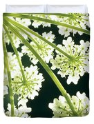 Himalayan Hogweed Cowparsnip Duvet Cover