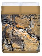 History Of Earth 4 Duvet Cover by Heiko Koehrer-Wagner