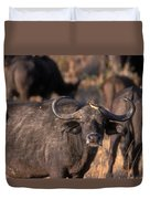 Hitching A Ride 1 Duvet Cover