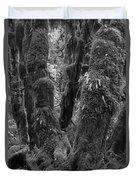 Hoh Rain Forest 3406 Duvet Cover