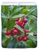 Holly Berries Duvet Cover