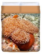 Home Of The Clown Fish 2 Duvet Cover