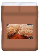 Home Of The Clown Fish 3 Duvet Cover