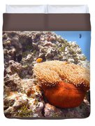 Home Of The Clown Fish 4 Duvet Cover