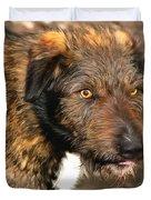 Homeless Dog Charlick Duvet Cover