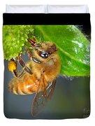 Honeybee Duvet Cover