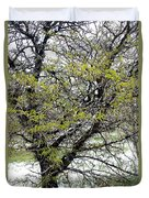 Honey Locust Tree On A Spring Snow Day Duvet Cover