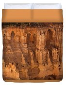Hoodoo Magic  Duvet Cover