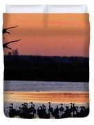 Horicon Marsh Cranes #5 Duvet Cover