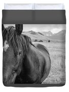 Horse And Sawtooth Mountains Duvet Cover