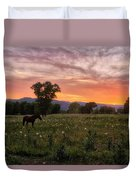 Horse At Sunset Duvet Cover