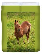 Horse In A Field With Flowers Duvet Cover