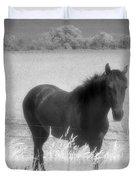 Horse In A Summer Dreamfield  Duvet Cover