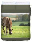 Horse In Field Near Ballyvaloo, Blackwater, Wexford Duvet Cover