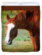 Horse Look Duvet Cover