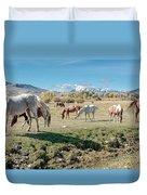 Horse Pasture Duvet Cover