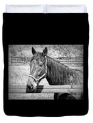 Horse Portrait In Black And White Duvet Cover