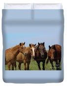 Horse Quartet Duvet Cover