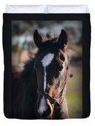 Horse Whispering Duvet Cover