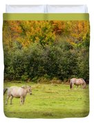 Horses Enjoying A Beautiful Autumn Day Duvet Cover