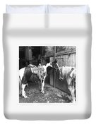 Horses In The Barn Duvet Cover