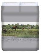 Horses On Ireland's River Shannon Duvet Cover