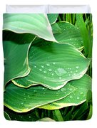 Hosta Leaves And Waterdrops Duvet Cover