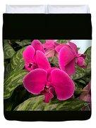 Hot Pink Orchids Duvet Cover