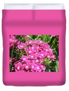 Hot Pink Sweet William Flowers In A Garden Blooming Duvet Cover