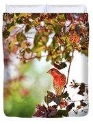 House Finch Hanging Around Duvet Cover