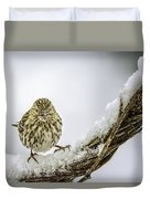 House Finch Snow Is Coming Duvet Cover by LeeAnn McLaneGoetz McLaneGoetzStudioLLCcom