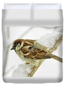House Sparrow Duvet Cover