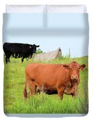 How Now Brown Cow Duvet Cover
