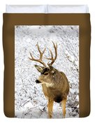 Huge Buck Deer In The Snowy Woods Duvet Cover