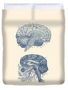 Human Brain - Central Nervous System - Vintage Anatomy Print Duvet Cover