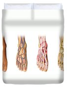 Human Foot Anatomy Showing Skin, Veins Duvet Cover