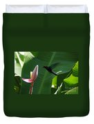 Hummingbird At Banana Flower Duvet Cover