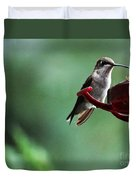 Hummingbird At Rest Duvet Cover