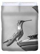 Hummingbird Intrigue  Duvet Cover