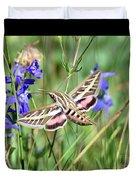 Hummingbird Moth Duvet Cover