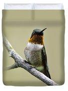Hummingbird Portrait Square Duvet Cover
