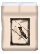 Hummingbird With Old-fashioned Frame 3 Duvet Cover