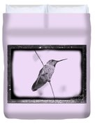 Hummingbird With Old-fashioned Frame 4 Duvet Cover