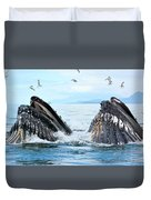 Humpback Whales In Juneau, Alaska Duvet Cover